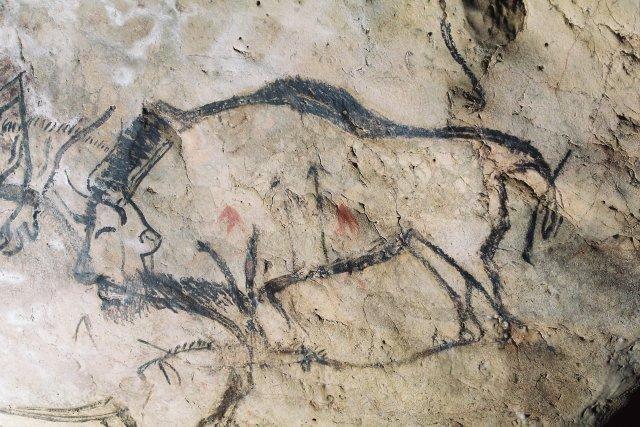 Bison à la Grotte de Niaux