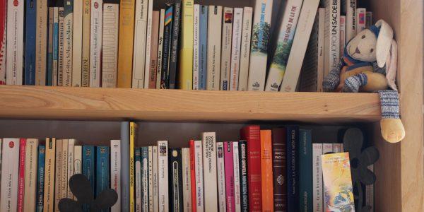 Lire ou relire une BD, un livre, un album
