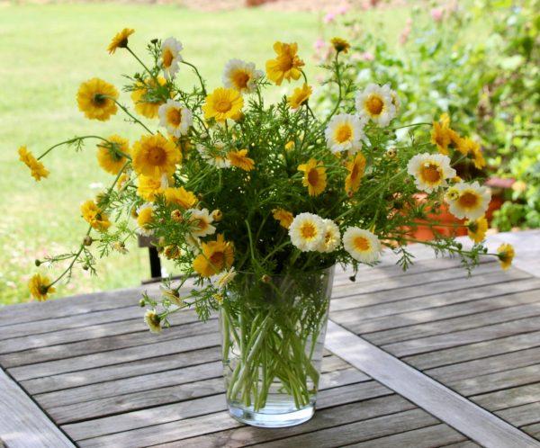 Fleurs des Couleurs du Vent