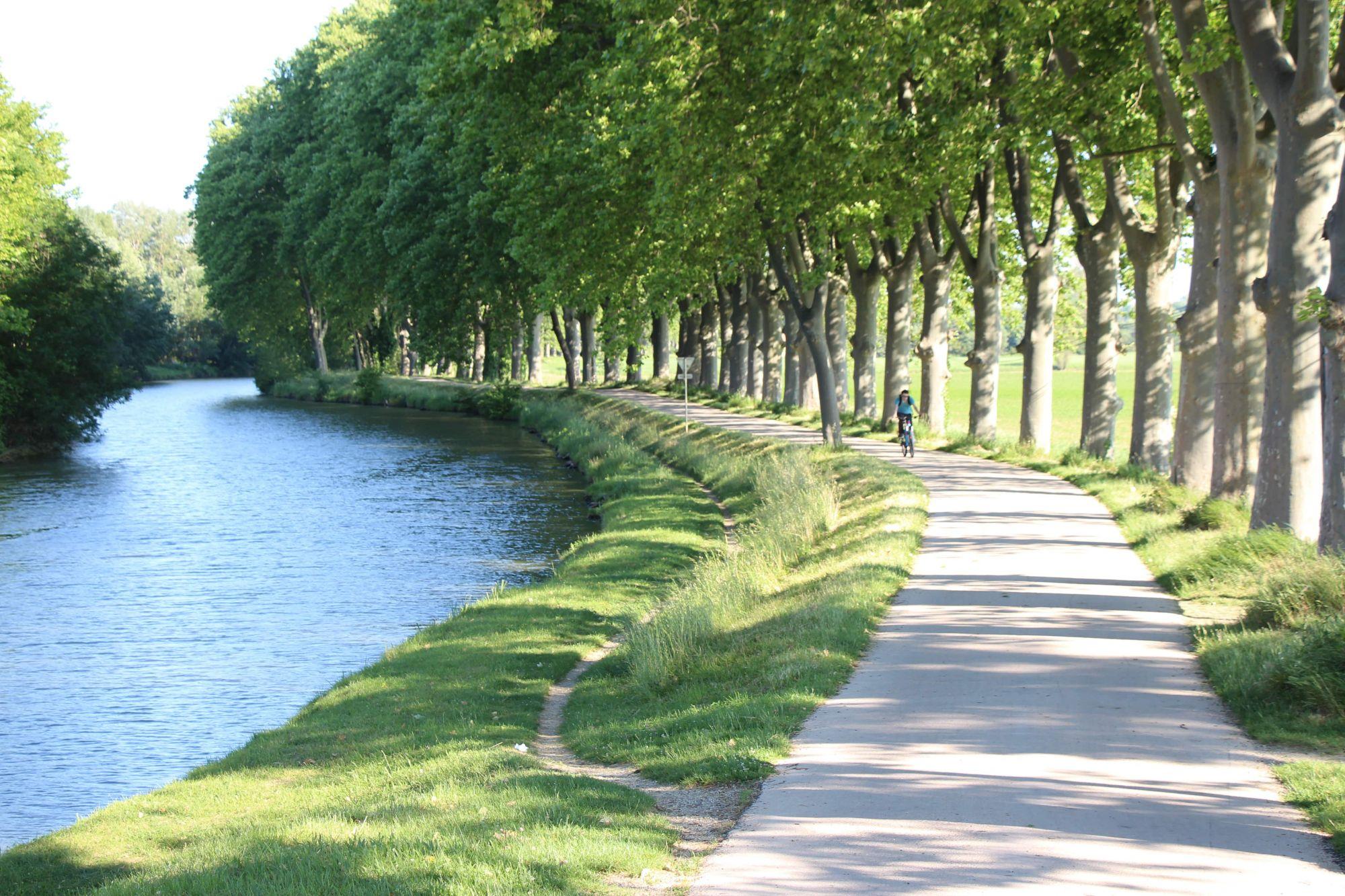 Piste cyclable Canal du Midi