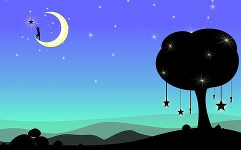 Nuit suspendue