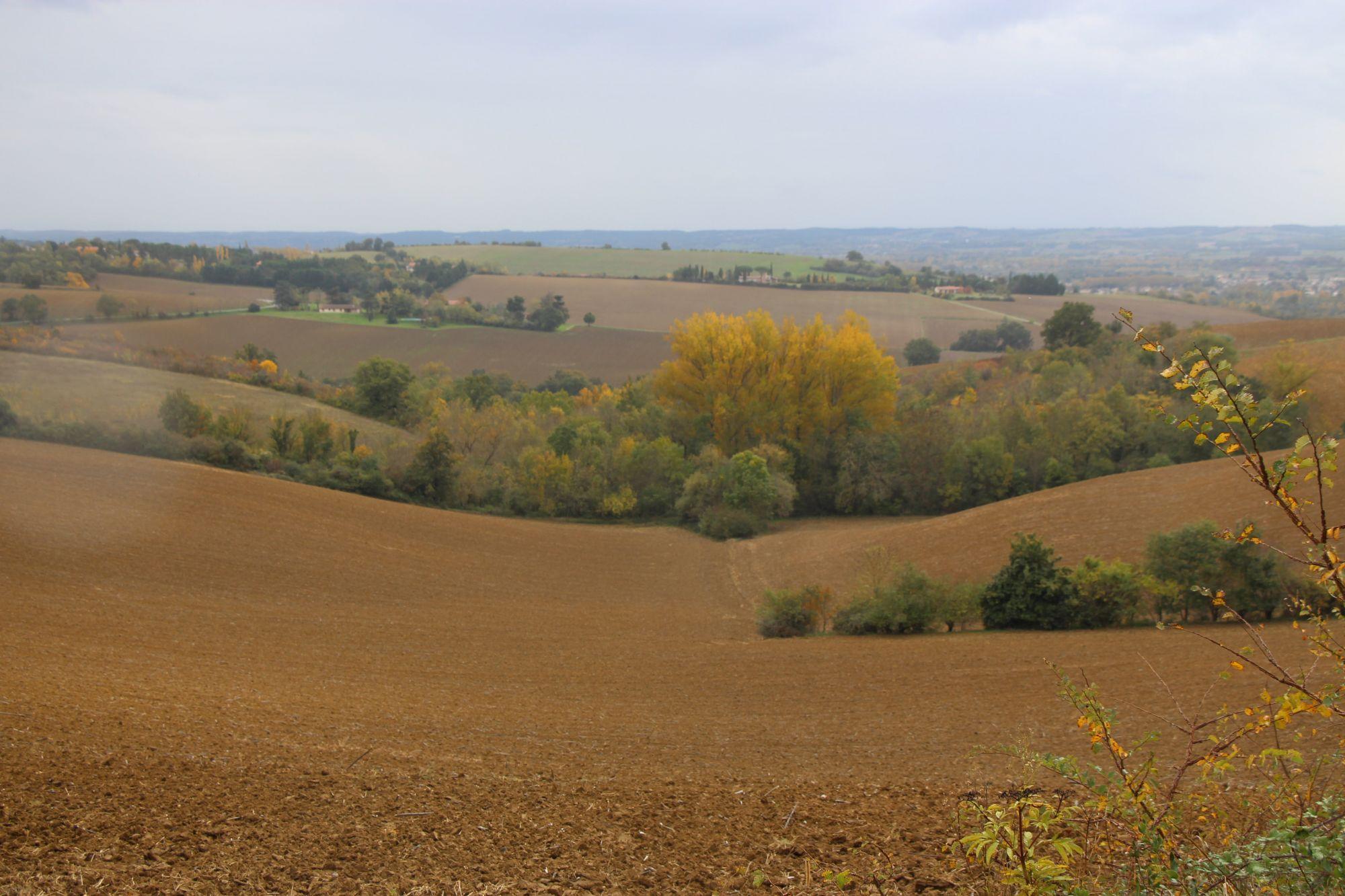 Randonnée Grands Champs et Grand Vallon de Clermont-le-Fort