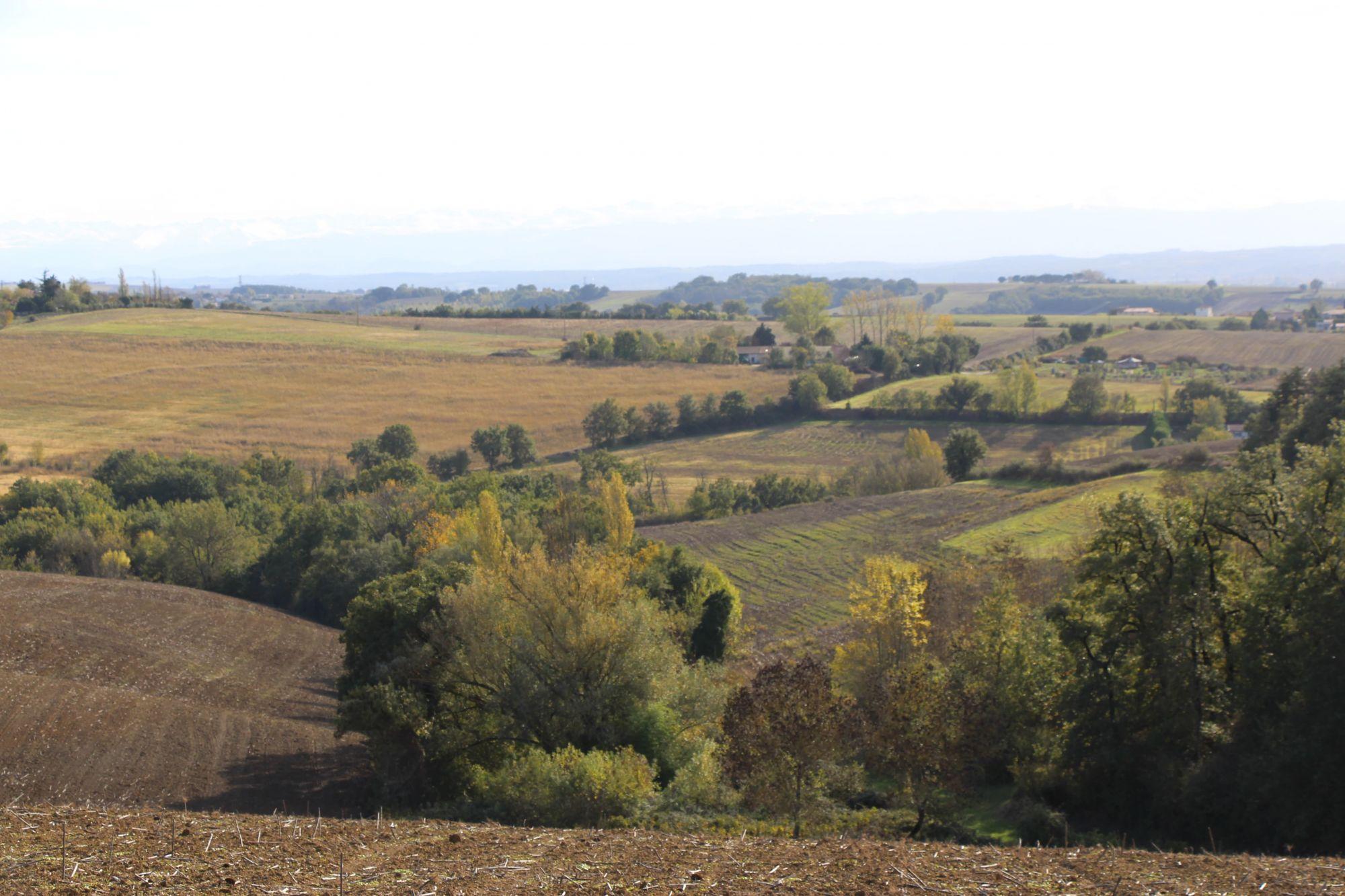 Randonnée Route des Crêtes à Clermont-le-Fort