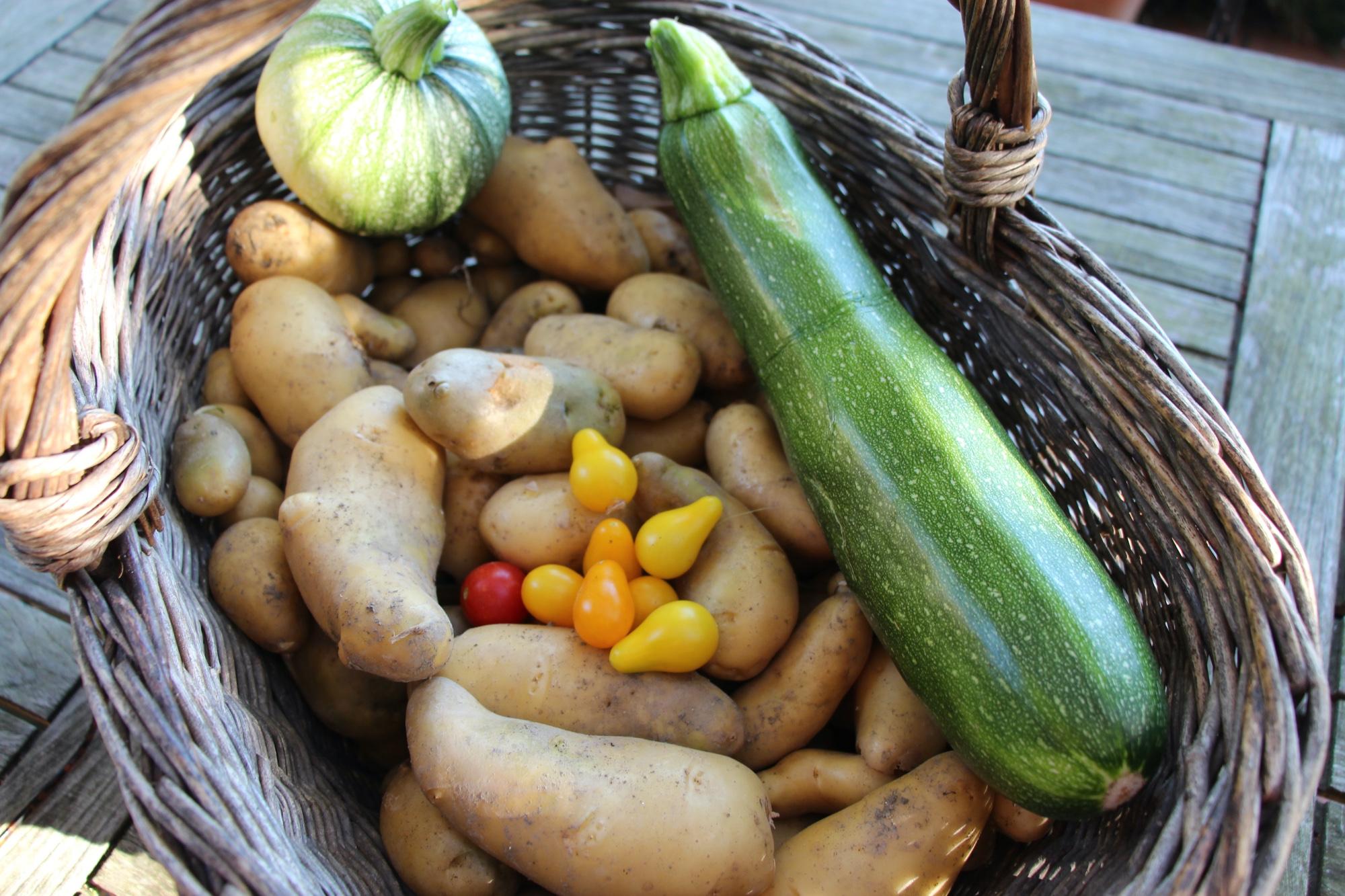 Pommes de terre & Cie