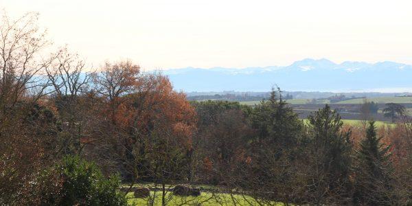 Vue sur les Pyrénées
